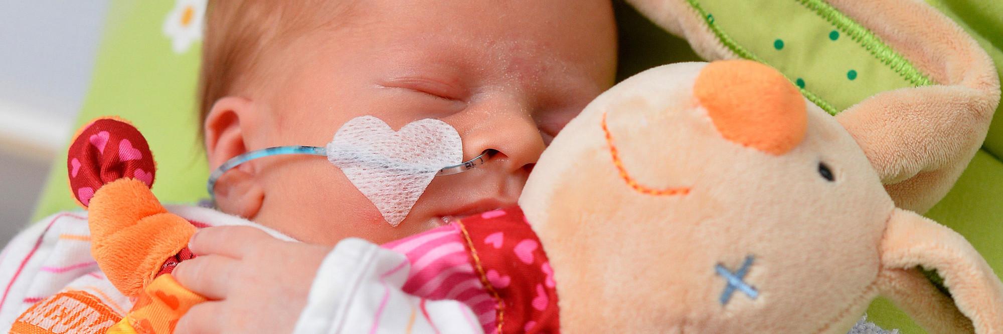 Ein neonatologisch betreutes Baby hält ein Kuscheltier im Arm.